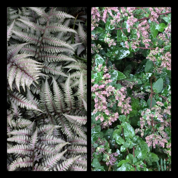 New Phototastic Collage Green copy