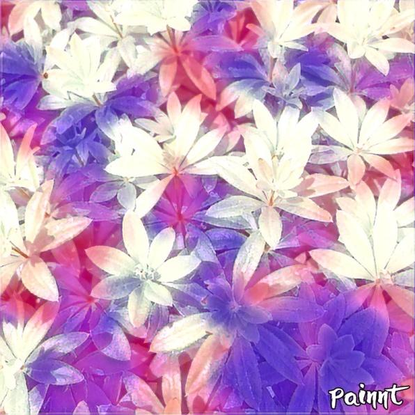 Painnt_Creation_2021-06-03_043229